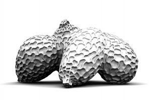 Tomas Medek, 4SEEDS, 3D Tisk,
