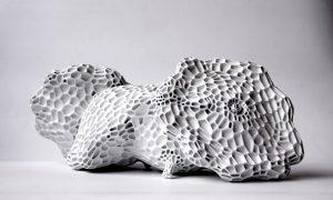 Tomas Medek, Patizony, 3D tisk,